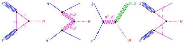 HiggsFeynmanGraphs